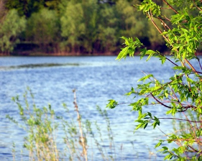 Beautiful River 47