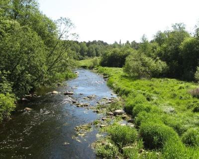 Beautiful River 49