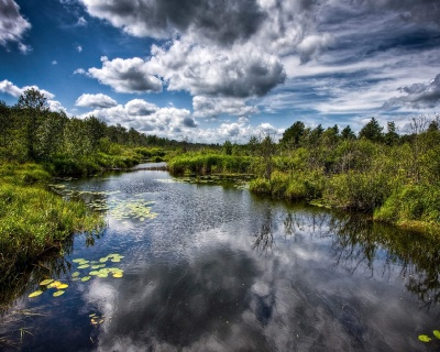 Beautiful River 54