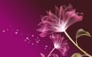 Flowers Design 22