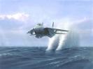 Fighter On Sea