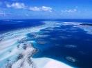 Australia-Coral Reef Torres Strait Islands