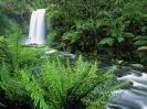 Australia-Hopetoun Falls Otway Ranges Victoria