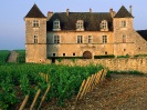 France-Clos de Vougeot Vineyard Vougeot