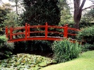 Ireland-Japanese Garden County Kildare