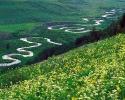 Beautiful River 11