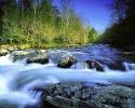 Beautiful River 12