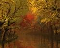 Beautiful River 15