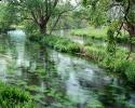 Beautiful River 21