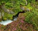 River :: Beautiful River 31